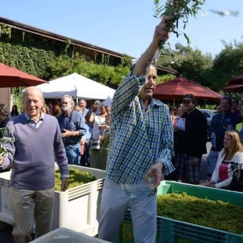 Grgich Hills Estate blesses 40th harvest: Napa Valley Register